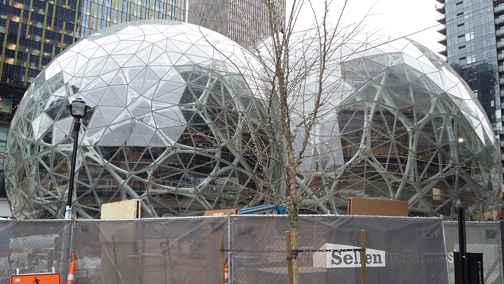 The largest of the biospheres under construction at the Amazon campus in Seattle will be 95 feet tall.